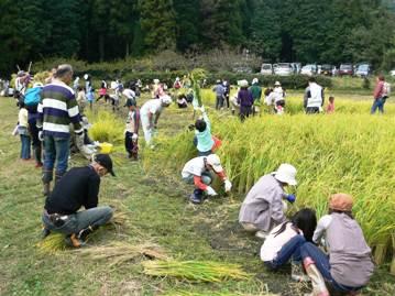 昨年度の収穫祭の様子