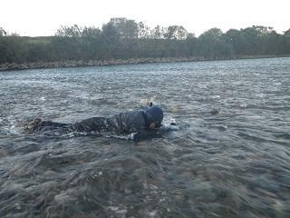 水中撮影2