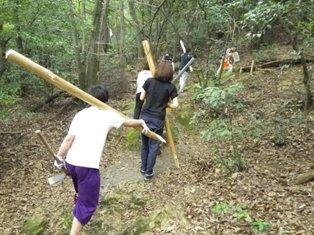 丸太を山中へ運びます