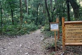 国有林入り口