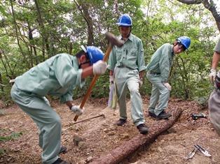 自発的に作業を行う岐阜農林の生徒達