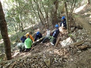 総勢8名での枯損木の引き揚げ