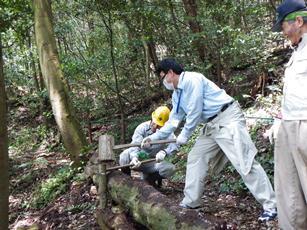 hodouseibi2_20120427