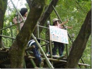 竹のジャングルジム2