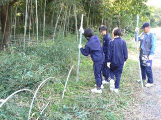 竹柵づくり@竹林公園